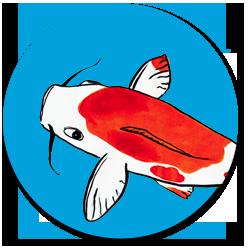 benjamin couradette - lumikoi logo